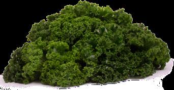 Gramada kale family